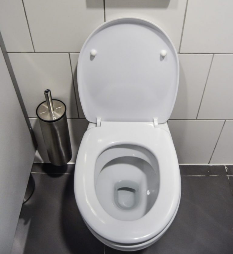 How to Clean The Toilet Bowl
