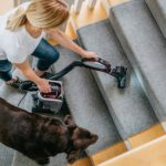 Best Vacuums for Pet Hair Removal
