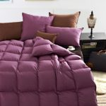 Best Lightweight Goose Down Comforters For All Season Use