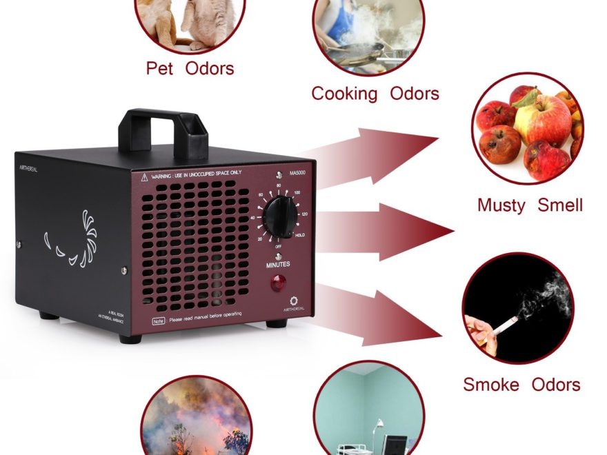 Best Ozone Generators for Mold and Odors