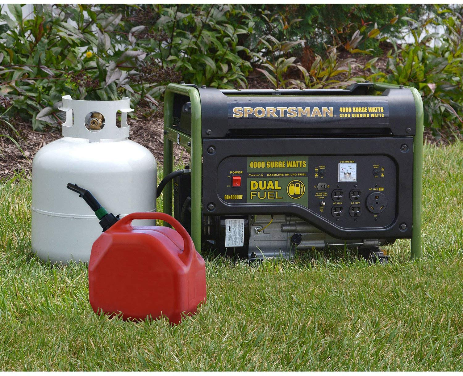 Dual Fuel Portable Generators