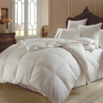 800 Fill Power Goose Down Comforter